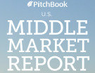PitchBook-Report
